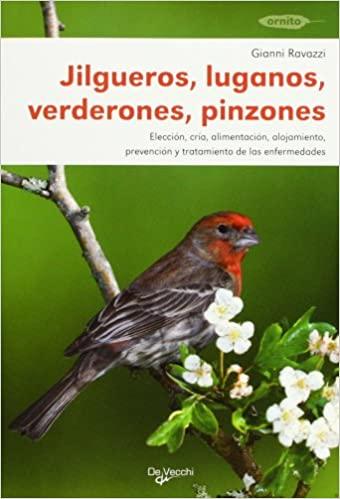 JILGUEROS, LUGANOS, VERDERONES Y PINZONES